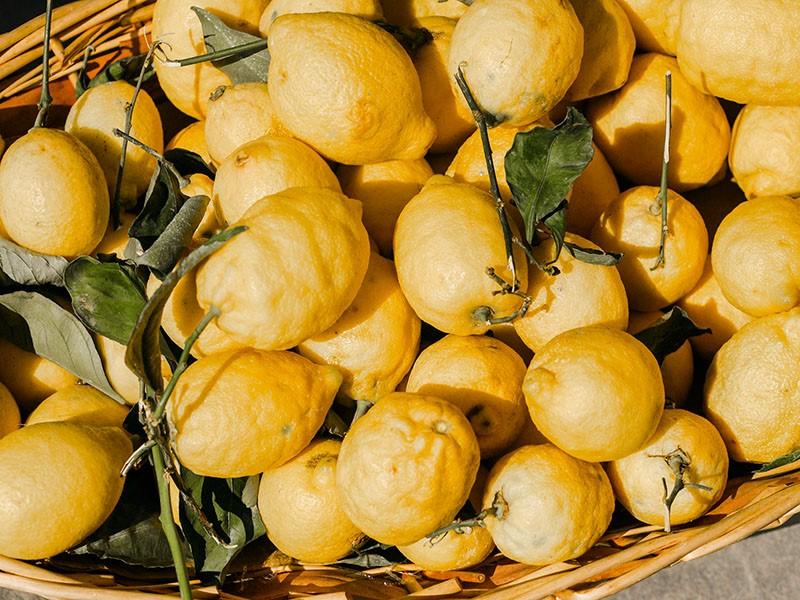 Zoom sur les 5 meilleurs ingrédients naturels d'Omnisens pour retrouver une peau éclatante de santé. À consommer sans modération !
